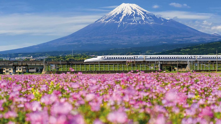 Bullet train travelling through fields with Mt Fuji in the background