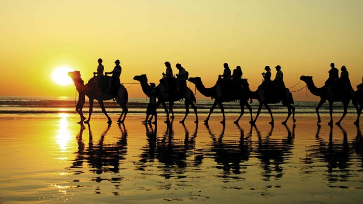 People riding camels in shallow water at sunset, Australia