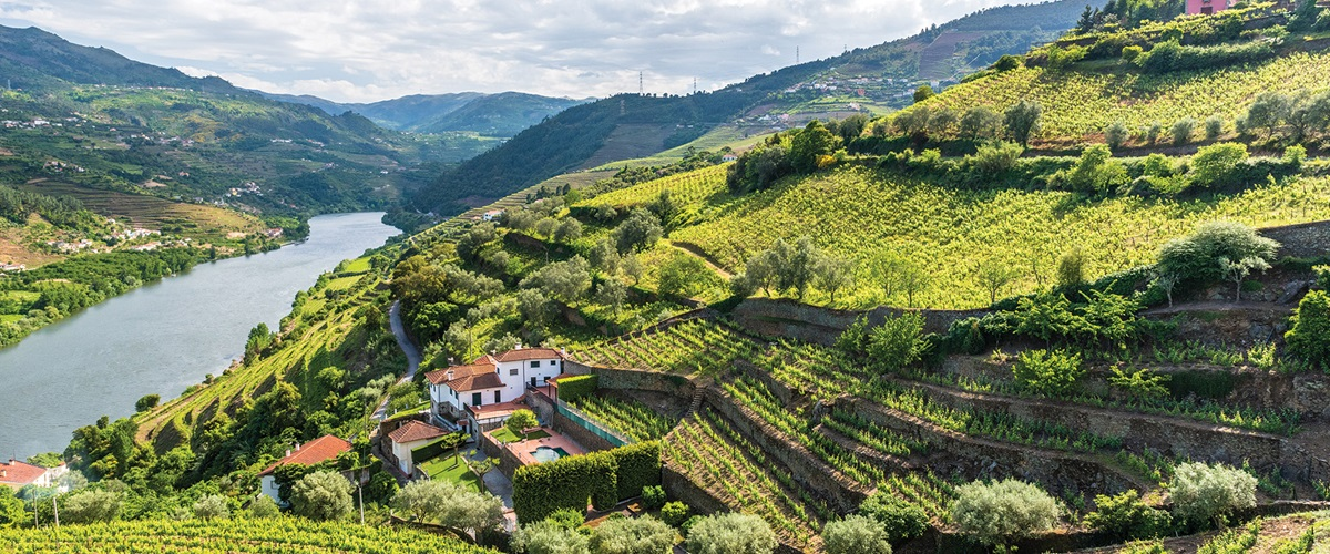 Get to know Portugal's Douro Valley.
