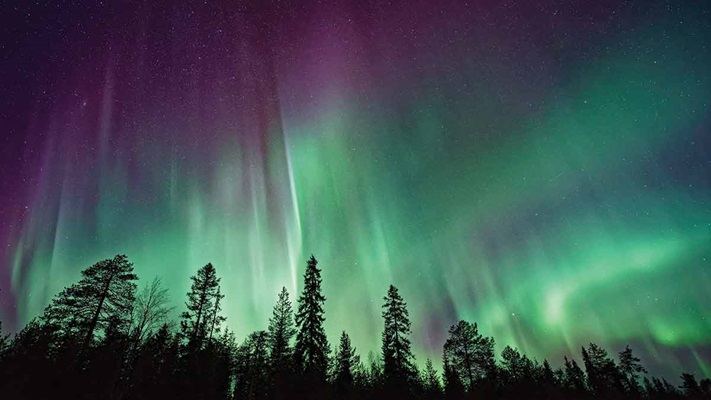 Streaky purple and green lights above trees at night, Canada